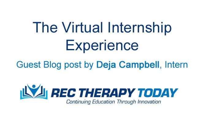 The Virtual Internship Experience