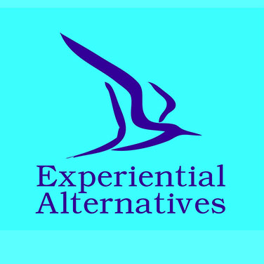 Experiential Alternatives with Sharon McGloin